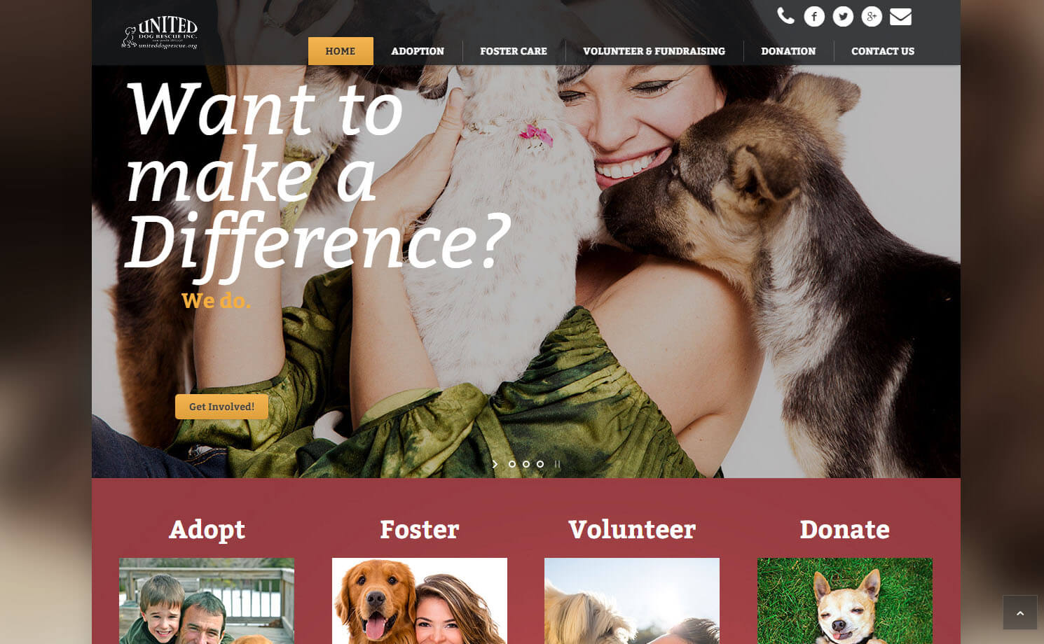 Donna Power Dog Rescue